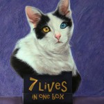 Seven Lives in One box